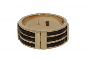 Antieke gouden ring met olifanten haar